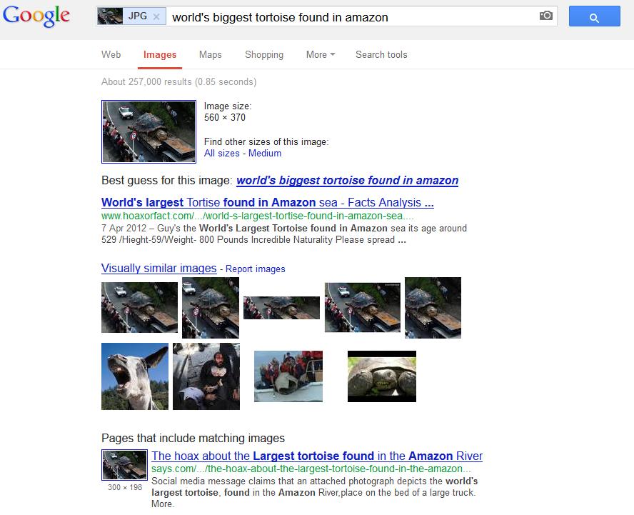 Как отличить фальшивую картинку при помощи Google