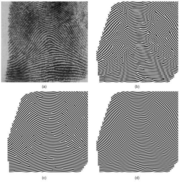 Реконструкция отпечатка пальца по упрощенной схеме из базы данных отпечатков