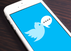 Twitter Digits Authentication Service