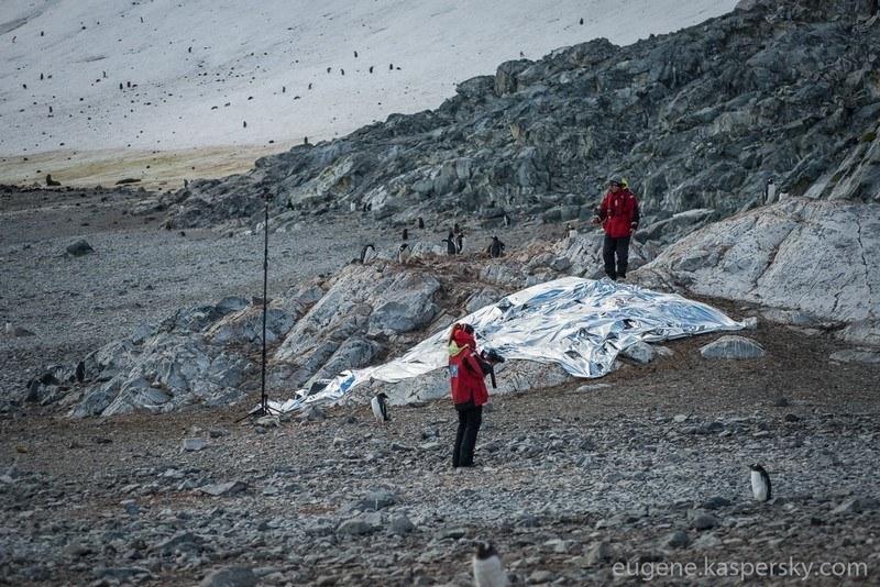 амаскировав свою научную экспедицию под культурное мероприятие Antarctic Biennale и отвлекая внимание потенциального противника двусмысленными арт-инсталляциями и перформансами, участники экспедиции незаметно фольгировали участок земли площадью примерно 20 квадратных метров