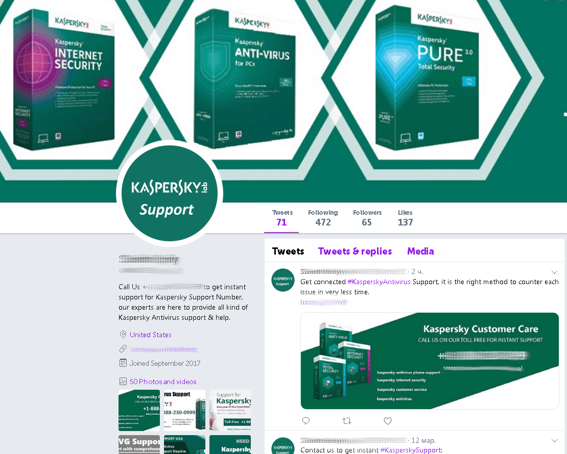 The fanciest fake Kaspersky Lab technical support account we found on Twitter