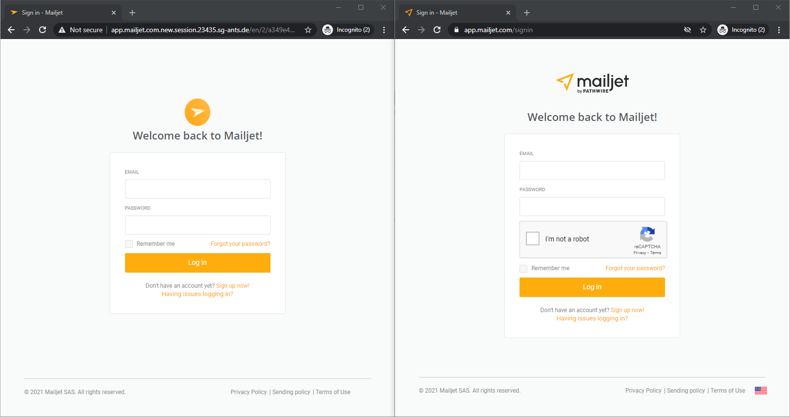 Two login screens. Fake page is on the left.