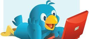 twitter bird on pc
