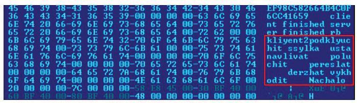 False flags in Lazarus code.