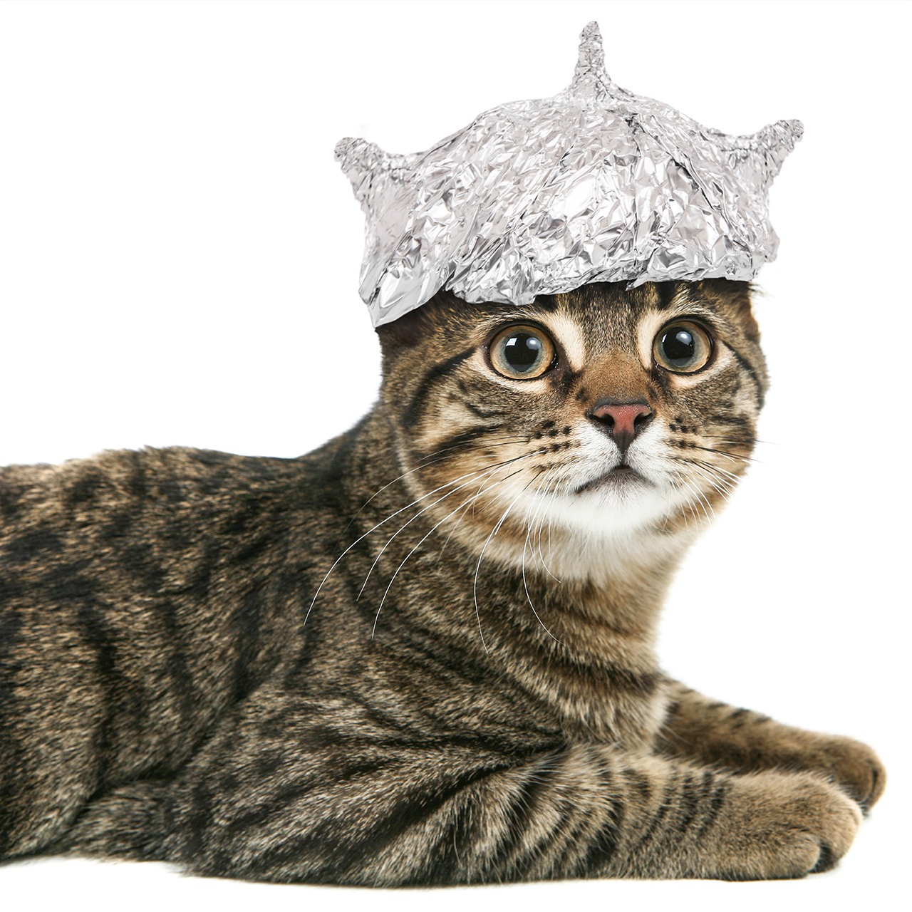 Celebrate Tin Foil Hat Day 2016
