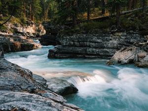 river privacy predictions 2020