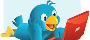 twitter bird on pc