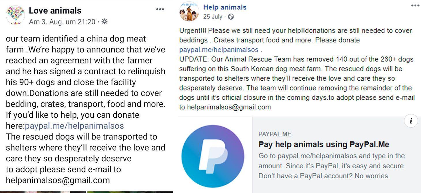 Ejemplo de grupos de caridad falsos en Facebook.