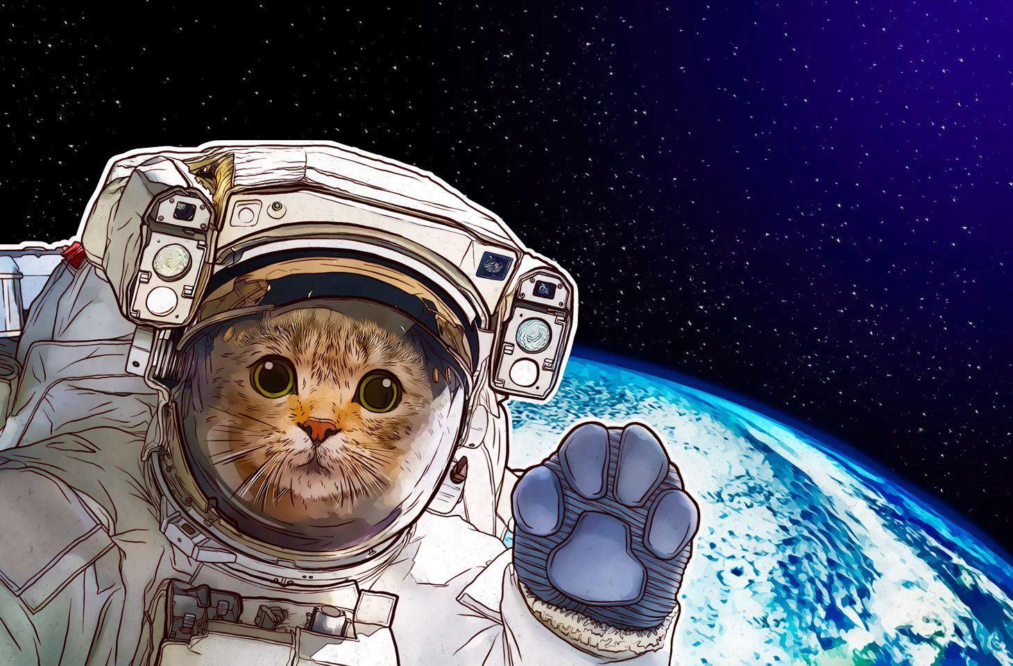 Internet nello spazio: c'è rete su Marte?