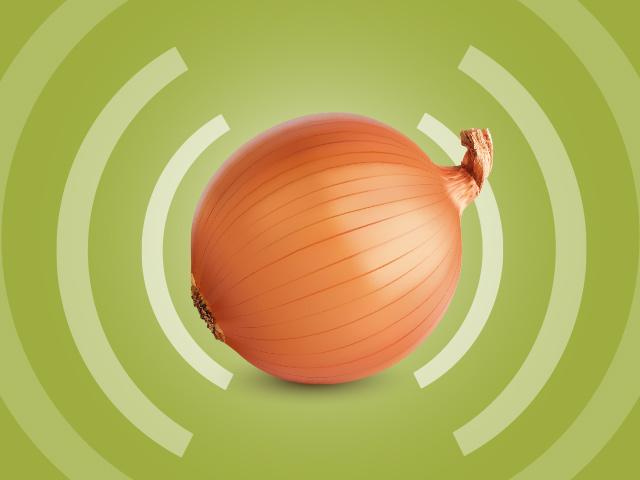 Все про анонимный интернет Tor
