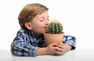 Трудности воспитания детей в эпоху Интернета