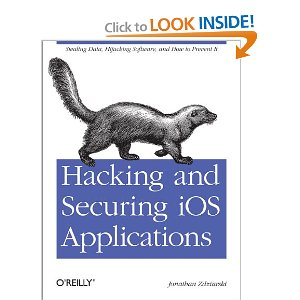 Hacking and Securing iOS App