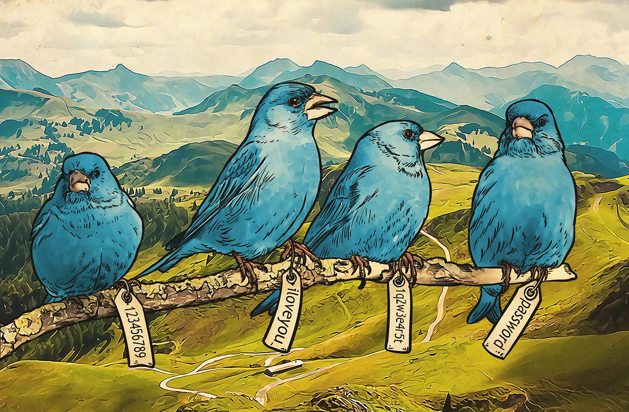 Faster, harder, Twitter: millions of passwords leaked