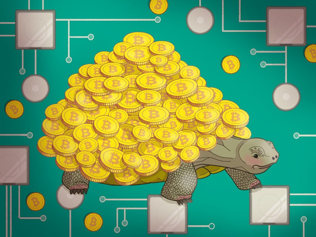 cryptojacking turtle