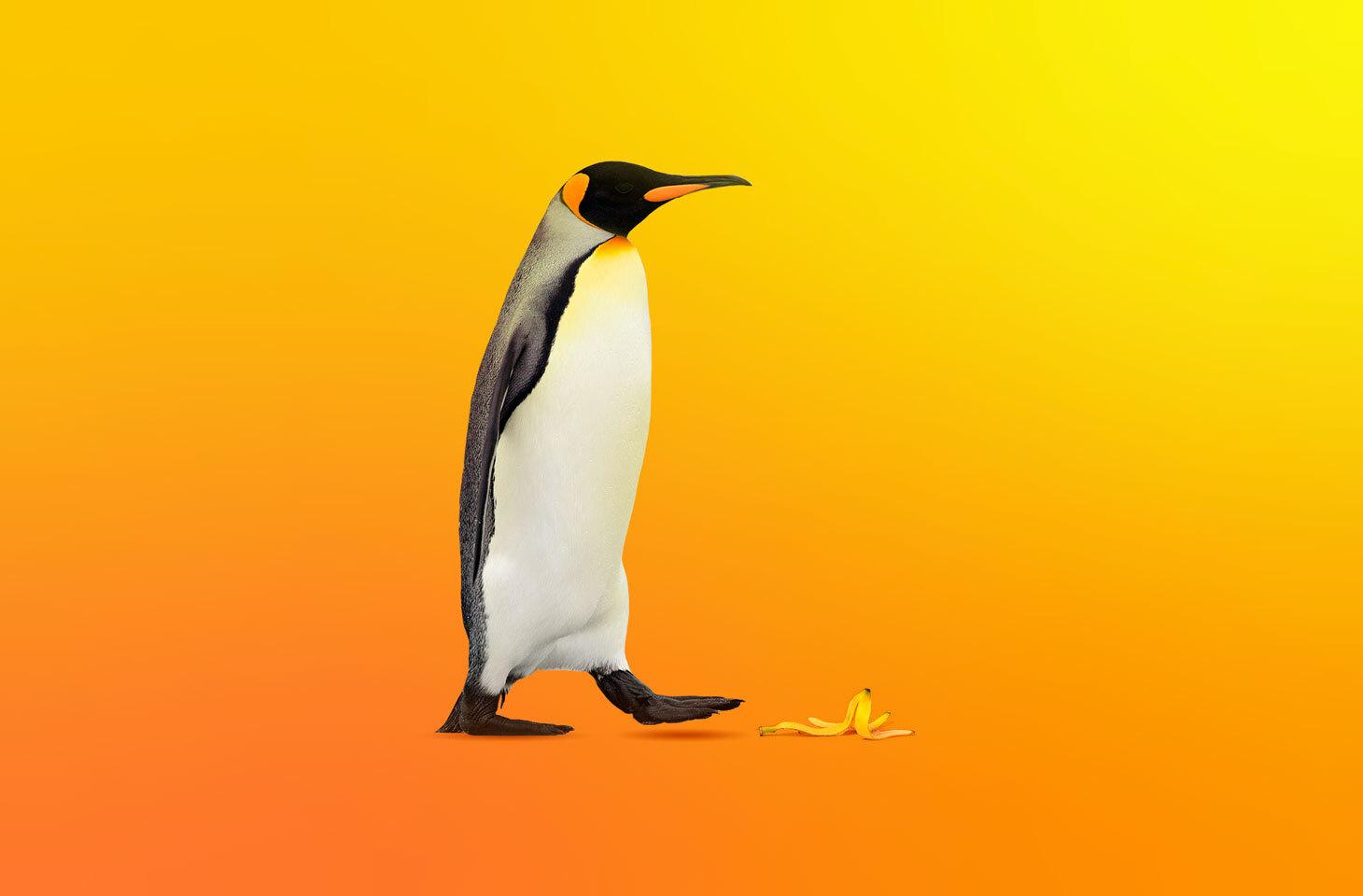 Linux éum sistema operacionalinvulnerável?