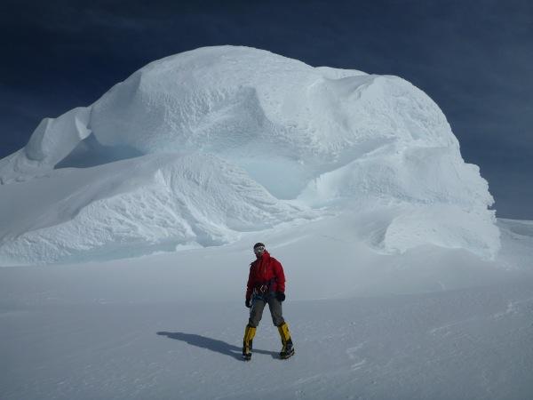 シドリー山 雪のキノコ