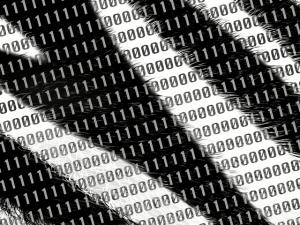 cyberpoachers