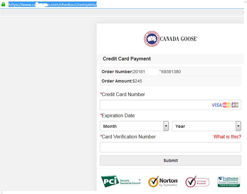 オンラインショップの、クレジットカード情報を盗むための偽ページ。認証アイコンはすべて単なる画像